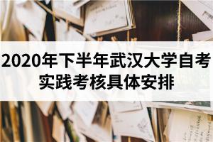 2020年下半年武汉大学自考实践考核具体安排